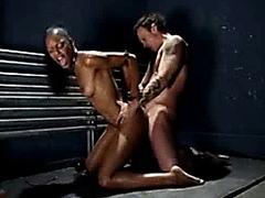 Chained Ebony Bitch!