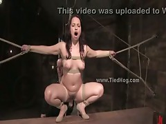 Busty whore tied like a hog is forced to suck cock and give deep blowjobs