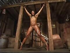 BDSM Files 024