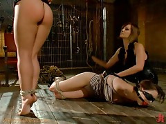 Hot Bondage and Domination In Lesbian Threesome