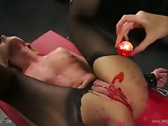 Queensnake.com - Wax Factor - Tracy 2