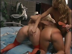 Beautiful lesbians have steamy threesome in bed