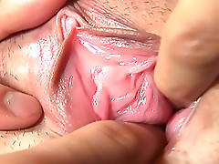 A Close Up Pussy At Its Best