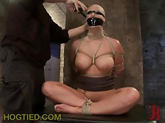 Wildest BDSM Action That You will Ever See For Sure!