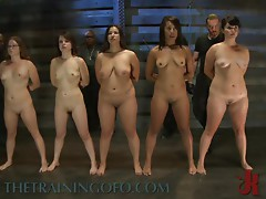 Horny Sex Slaves Get in Line For a Fuck
